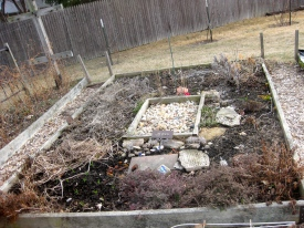 Herb Bed before Clean Up - 3/20/15
