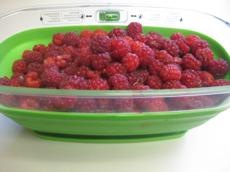 And I thought last year was a good year for raspberries! I'm getting even more this year. 6/27/15