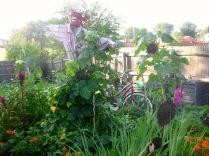 Mrs. Greenbeans and Cutting Garden