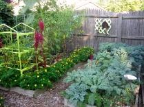 Right Side Tomato Bed and Kale Covering Strawberries