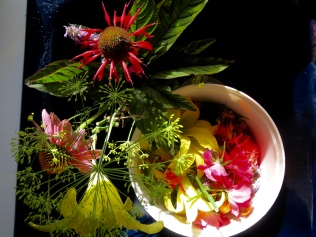 Edible Flower Harvest - 7/25/16