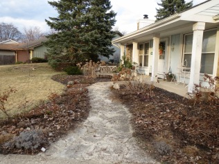 Front Yard AFTER Clean Up - 2/27/17