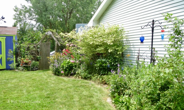 Back Yard Cottage Garden